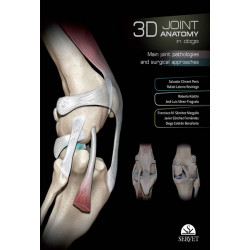 3D Joint Anatomy in Dogs: Main Joint Pathologies and Surgical Approaches