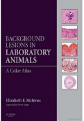 Background Lesions in Laboratory Animals: A Color Atlas