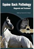 Equine Back Pathology: Diagnosis & Treatment