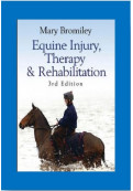 Equine Injury, Therapy & Rehabilitation