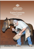 Equine Laminitis: Current Concepts