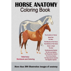 Horse Anatomy: Coloring Book