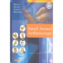 Small Animal Arthroscopy