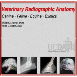 Veterinary Radiographic Anatomy: Canine, Feline, Equine, Exotics [Windows Software]
